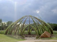 Awesome giant willow dome