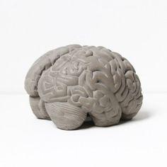 Cerveau Gray matters serre livres. Né d'une réflexion sur la matière béton, « matière grise » par définition, le serre-livres « BRAIN » composé des deux hémisphères du cerveau humain, matérialise notre pensée et rend ainsi visible l'étendue de nos connaissances. #livre #serre #bibliotheque #design #beton