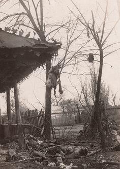 WWI, 3 Dec 1916;  Dead Romanian soldiers. -Getty