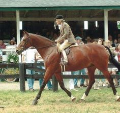 Ellie Wood at the age of 90.  She is the 1936 Maclay winner. LEGEND