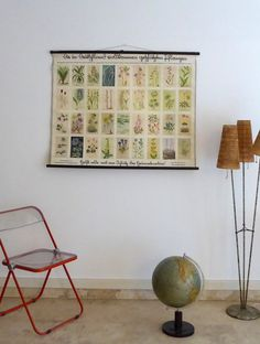 Protected Plants Pull Down Chart - Vintage Botanical Poster - Authentic German School Chart