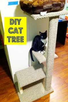 DIY your own cat tree / cat condo perfect for your space. http://www.hometalk.com/l/IlQ