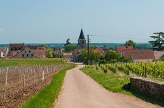 Vosne-Romanée village in Bourgogne, France