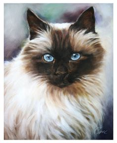 Top 15 Ways to Celebrate Cats >> Commission a custom painted cat portrait or hire a photographer (or DIY) for a fun photo shoot.