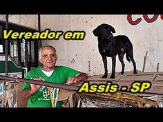 """CATADOR VIRA VEREADOR EM ASSIS SP """" NILSON DO CACHORRO """" """" ELEIÇÃO """""""