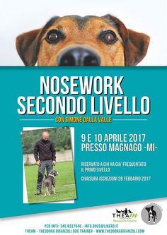 Nosework per quelli bravi: a Theam c'è il secondo livello con Simone Dalla Valle :http://www.qualazampa.news/event/nosework-per-quelli-bravi-a-theam-ce-il-secondo-livello-con-simone-dalla-valle/