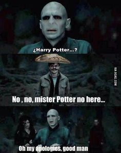 No,no, mister Potter no here... Laughed a bit too hard.