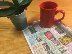 January is prime time for dog-earing the pages of your new seed catalogs.