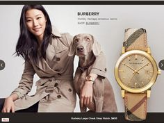 burberry ad weimaraner