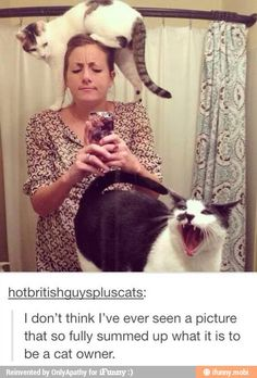 Lol- that cat is stepping over her head like it is a huuuge inconvenience and she could easily correct such a thing...