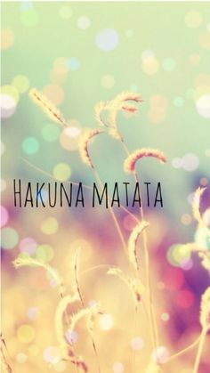 Hakuna Matata means worries for the rest of your days...