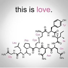 The chemical formula for love. C8H11NO2+C10H12N2O+C43H66N12O12S2
