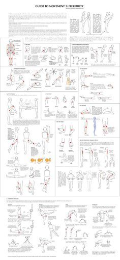 Flexibility chart - made by martial artist who also does art