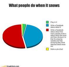 make a pie chart? Make Em Laugh, I Love To Laugh, Just Smile, Facebook Status, Facebook Humor, Funny Quotes, Funny Memes, Hilarious, Snow Meme