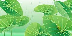 [フリーイラスト素材] イラスト, 風景, 自然, 植物, 葉っぱ, フキ, 雨, 蛙 / カエル, 緑色 / グリーン, 梅雨, AI ID:201404271900