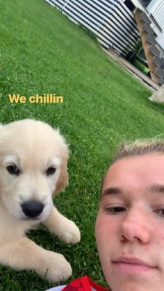 Twin Boys, My Crush, Labrador Retriever, Corgi, Humor, Celebrities, Cute, Animals, Mac