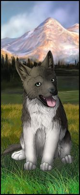Wolf Play - Wolf Roleplay Game | Wolf Breeding Game | Exploration