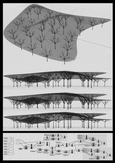 Tree structure design by Reza Eslami Rhino Architecture, Parametric Architecture, Parametric Design, Facade Architecture, Architecture Diagrams, Architecture Portfolio, Tree Structure, Shade Structure, Roof Design