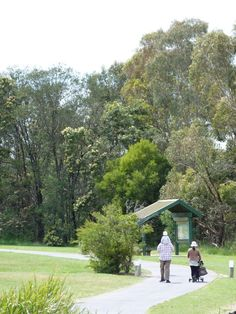 A very popular and gentle walk that includes beautiful open parkland, lakeside views, abundant birdlife, and lush wetlands. Dogs on lead allowed in some areas. Lakeside View, Conservation, Lush, Paths, Melbourne, Walking, Urban, Explore, House Styles