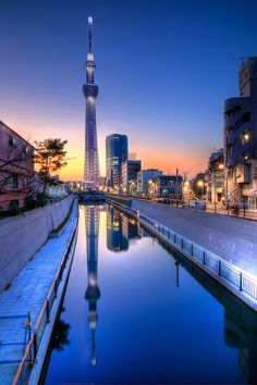 Tokyo Sky Tree - this is the largest telecom tower in the worrrrrldddddddd! Imagine dining there T___T Cry over the view, hope they have ramen for you Tokyo Skytree, Japon Tokyo, Beautiful World, Beautiful Places, Beautiful Sky, Sky Sunset, Shinjuku Gyoen, Tsukiji, Futuristic Architecture