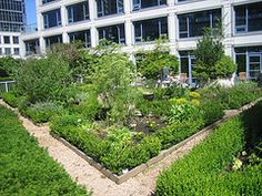 Fairmont Hotel Vancouver Rooftop Herb and Vegetable garden