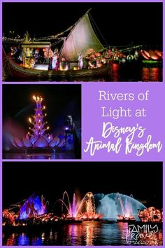 Our review of the brand-new Rivers Of Light show at Disney's Animal Kingdom.