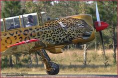 LEO  Plane  .