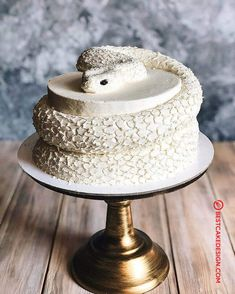 50 Most Beautiful looking Snake Cake Design that you can make or get it made on the coming birthday. Halloween Birthday Cakes, Cool Birthday Cakes, Birthday Cake Girls, Beautiful Cakes, Amazing Cakes, Snake Cakes, Realistic Cakes, Sculpted Cakes, Cupcakes