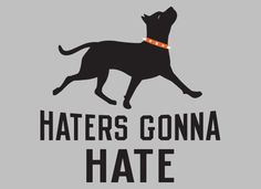 Haters Gonna Hate Pitbull and thats right peple so hate someone else Nanny Dog, Dog Fighting, Pit Bull Love, Dog Signs, Puppy Love, Best Dogs, Dog Lovers, Pitbulls, Dog Cat