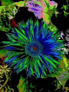 Abstract Crazy Colors in the Garden on Black Fine Art Print