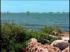 Our Watershed, Our Responsibility: Sarasota Bay Estuary Program
