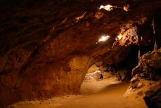 11 must see parks in florida. florida_caverns_state_park.jpg