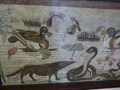 Roman Mosaic. Mongoose and Snake. Pompeii, Italy.