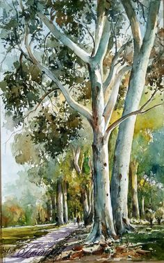 61 best watercolor paintings: nature images in 2016 Watercolor Paintings Nature, Watercolor Art Face, Watercolor Projects, Watercolor Trees, Watercolor Sketch, Paintings Of Trees, Watercolors, Beautiful Paintings Of Nature, Watercolor Art Landscape