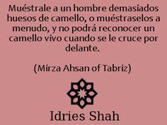 Muéstrale a un hombre demasiados huesos de camello, o muéstraselos a menudo, y no podrá reconocer un camello vivo cuando se le cruce por delante. - Idries Shah, Mirza Ahsan de Tabriz.