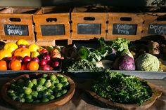 Farm Nursery, Home Meals, Fruit Trees, Lamb, Succulents, Vegetables, Food, Meal, Essen