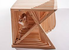 Arquitetos criam casas de gatos super originais para a caridade - Follow the Colours