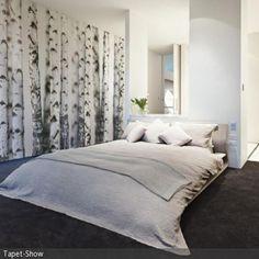 Birken Fototapete im Schlafzimmer …