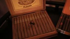 Cigar club. Cigars in a close-up box stock footage