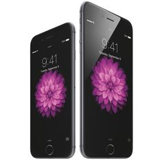 Apple to Launch the iPhone 6 in India on October 17th, Pre-Orders Start Tomorrow - http://iClarified.com/44417 - Apple has reportedly announced that the iPhone 6 and iPhone 6 Plus will launch on October 17th in India.