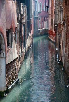 Venice backyard