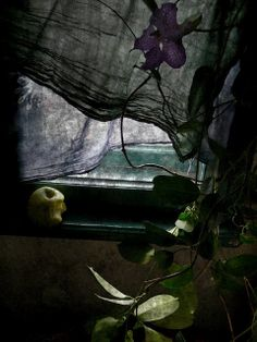 Katia Chausheva.  An absolute must photograph for the wall gallery!