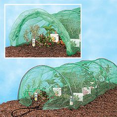 1000 Images About Our Veggie Garden On Pinterest Vegetable Garden Raised Beds And Vegetables