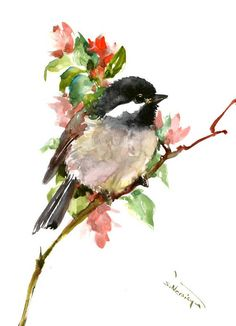 watercolor art Chickadee one of a kind watercolor painting