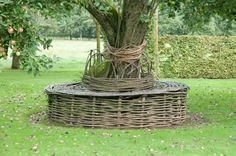 Chair woven arpound tree at Prieure D'Orsan