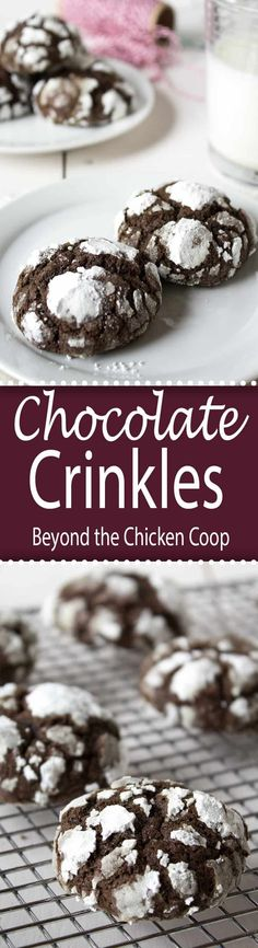 Chocolate crinkles cookie are soft on the inside and crackly on the outside!  via @Beyondthecoop