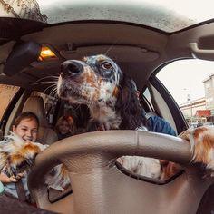 """Greta behind the wheel"" #: @hammertoe41. (No # were actually driving during this shot) #GoPro"