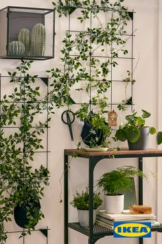 A wall garden formed using artificial plants attached to sections of wire memo board framed by other real and fake plants. A wall garden formed using artificial plants attached to sections of wire memo board framed by other real and fake plants. Fake Plants Decor, Small Plants, Cool Plants, Hanging Plants, Plant Decor, Nature Plants, Ikea Fake Plants, Free Plants, Home Decor Ideas
