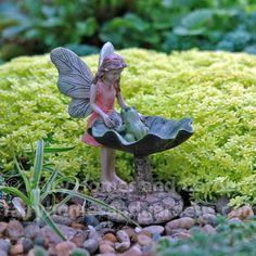 Fairy Homes and Gardens - Fairy with Frog Birdbath, $7.79 (http://www.fairyhomesandgardens.com/fairy-with-frog-birdbath/)