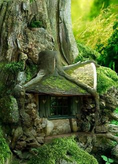 Tree House in the Forrest.fairy house Could you imagine stumbling onto this in the forest? Architecture Organique, Unusual Homes, Forest House, Forest Cottage, Storybook Cottage, Forest Cabin, Cottage House, Shabby Cottage, Cottage Chic